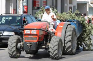 Der griechische Bauer heute