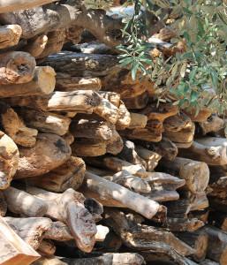 Holzstapel auf einem Hinterhof
