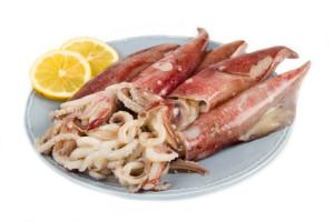 Frische Kalamari (Tintenfische)